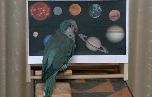 太陽系1_3