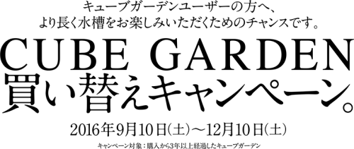 cube2016_ttl_pc[1]