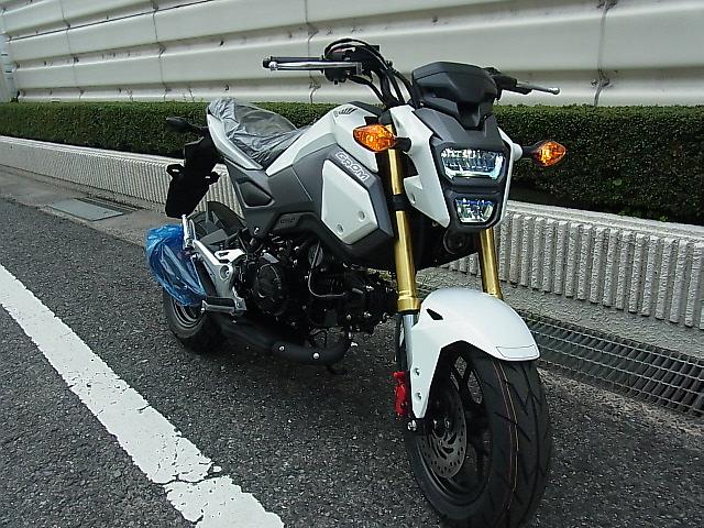 RIMG6516.jpg