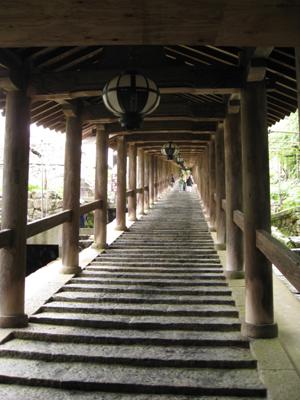 奈良のお寺と忍者修行の旅1 1