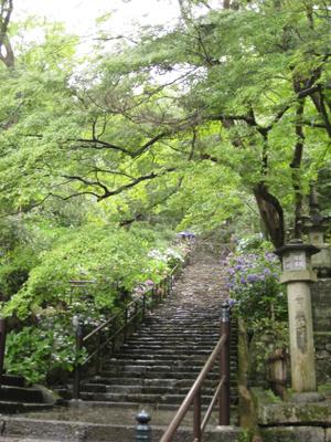 奈良のお寺と忍者修行の旅1 2