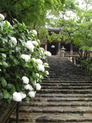 奈良のお寺と忍者修行の旅1 5