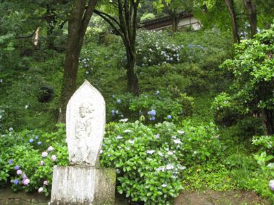奈良のお寺と忍者修行の旅1 6