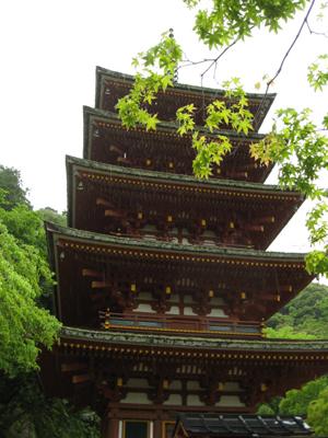 奈良のお寺と忍者修行の旅1 7