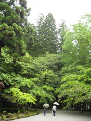 奈良のお寺と忍者修行の旅1 17