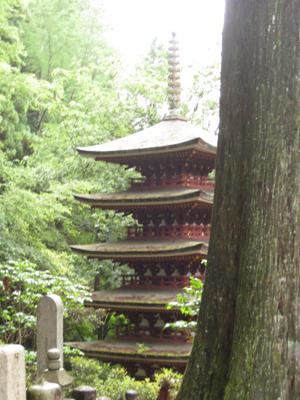 奈良のお寺と忍者修行の旅1 21