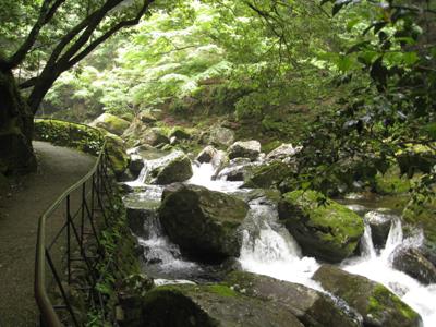 奈良のお寺と忍者修行の旅2 6