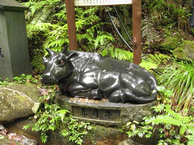 奈良のお寺と忍者修行の旅2 9
