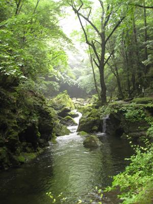 奈良のお寺と忍者修行の旅2 17