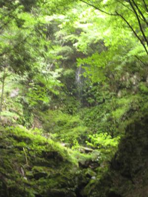 奈良のお寺と忍者修行の旅2 18