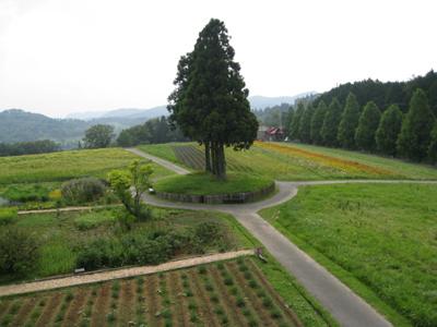奈良のお寺と忍者修行の旅2 32