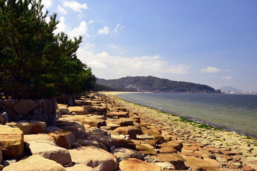 松原と博多湾