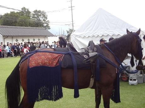 武者行列の馬2