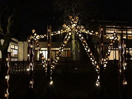 新江戸川公園夜6