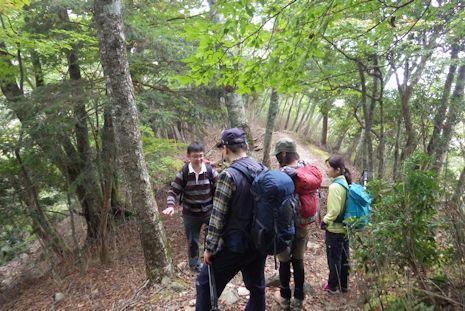 檜洞丸の自然を解説