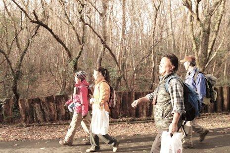 初冬の森をお散歩