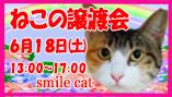 smile201606s