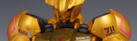 HGIBOガンダムバルバトス「ゴールドインジェクションカラー」