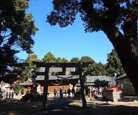 1203水竹神社天神松