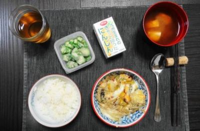 うなぎの柳川ご飯