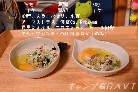160922_9662.jpg