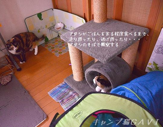 161008_0115.jpg
