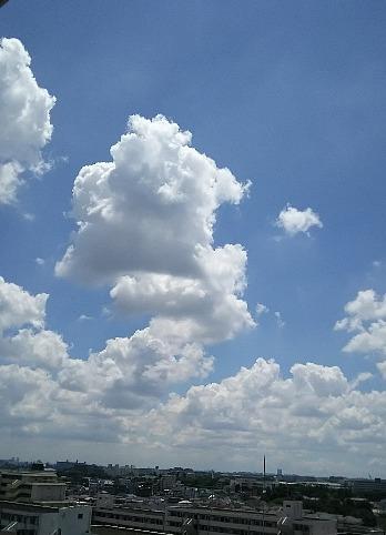 夏本番の雲
