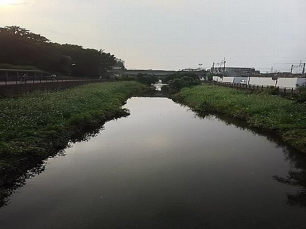 空堀川に水