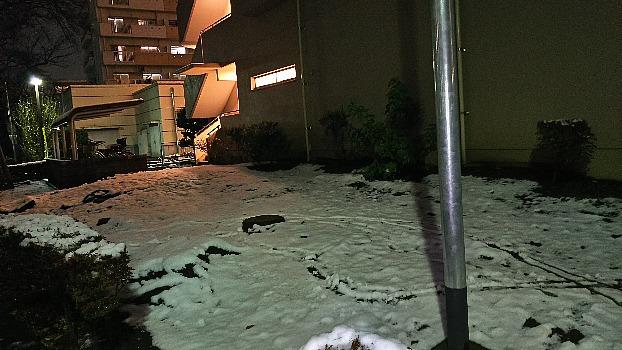 霜月の初雪