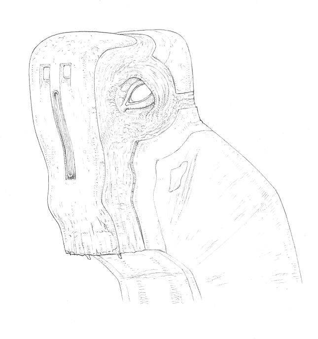vega_re-design_sketch2016_24.jpg