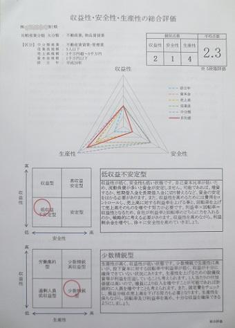 決算分析報告書5