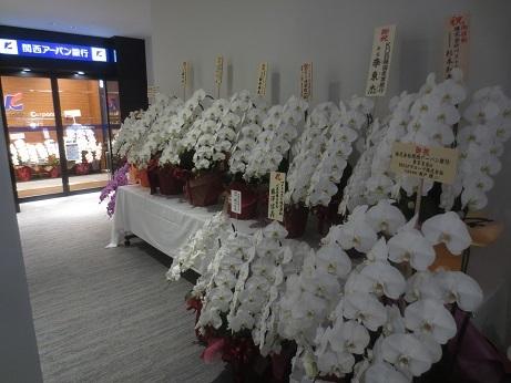 関西アーバン銀行胡蝶蘭入口