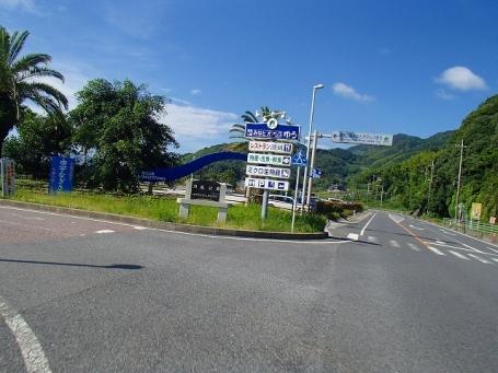 P7030114.jpg