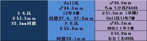 17ygtm535.jpg