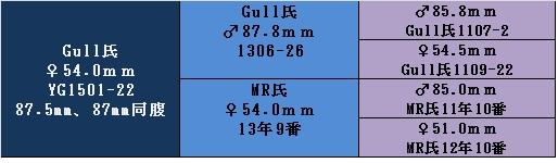 17yg1501-22 54
