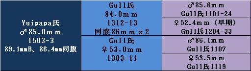 17ygyp1503 85