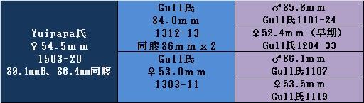 17ygyp1503 54