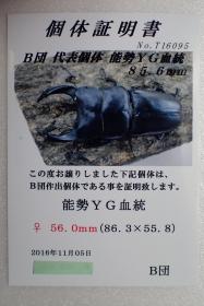 2016_12160049.jpg