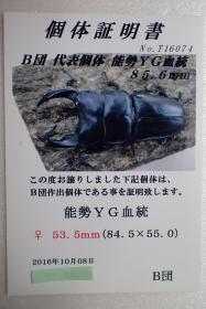2016_12160052.jpg