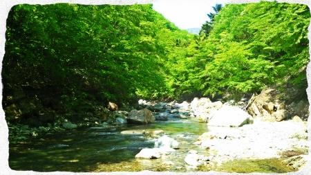 2016 那珂川水系4 (6)