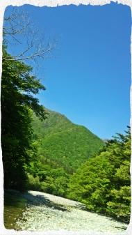 2016 那珂川水系4 (1)