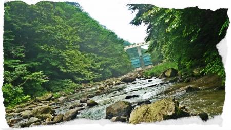 2016 那珂川水系7 (3)
