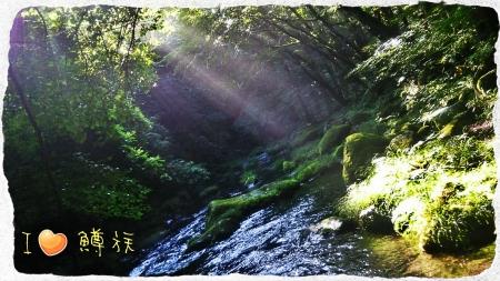 2016 那珂川水系9 (2)
