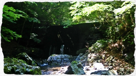 2016 鬼怒川水系5 (2)