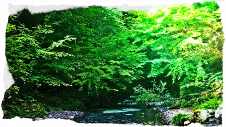 2016 鬼怒川水系11