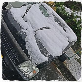 2016 初雪 (1)