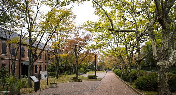 石川県立歴史博物館01