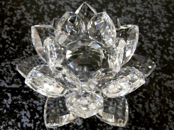 セーラームーン 銀水晶の花 コスチューム用