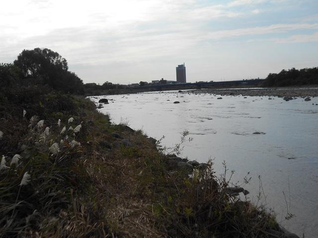 。DSCN1300冬季ニジマス釣り場管理棟前より下流1025.jpg