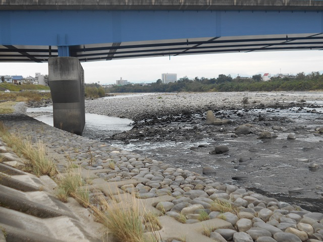 DSCN131010.28大渡橋.jpg